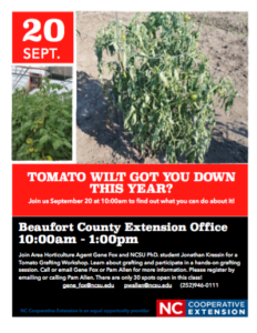 Cover photo for Tomato Wilt Got You Down This Year?