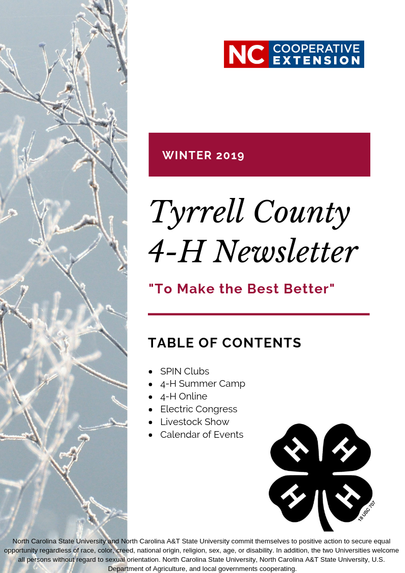 frost coated branches on newsletter cover