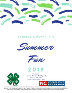 Cover photo for 4-H Summer Fun 2019