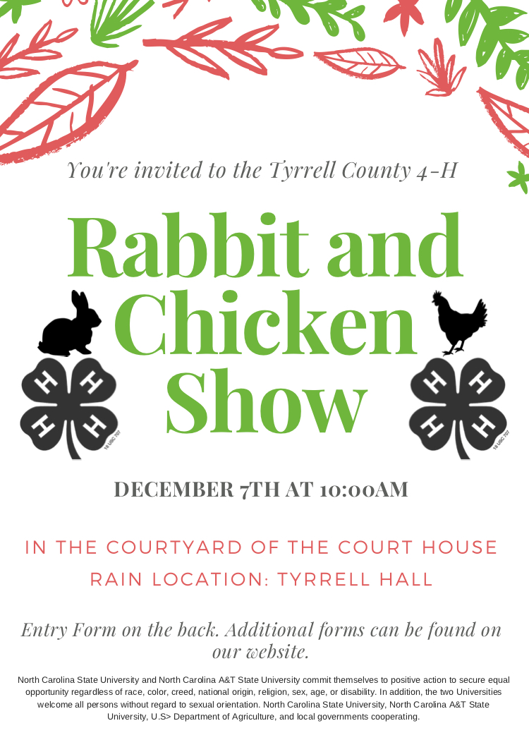 Rabbit and Chicken Show flyer