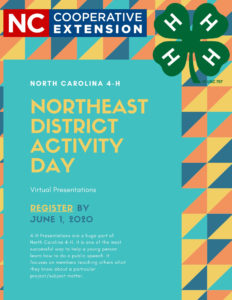 Cover photo for NED District Activity Day