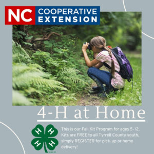 Cover photo for 4-H at Home